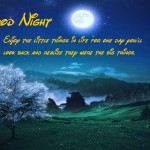 Romantic Good Night Wishes Messages – Good Night SMS, Quotes Pictures