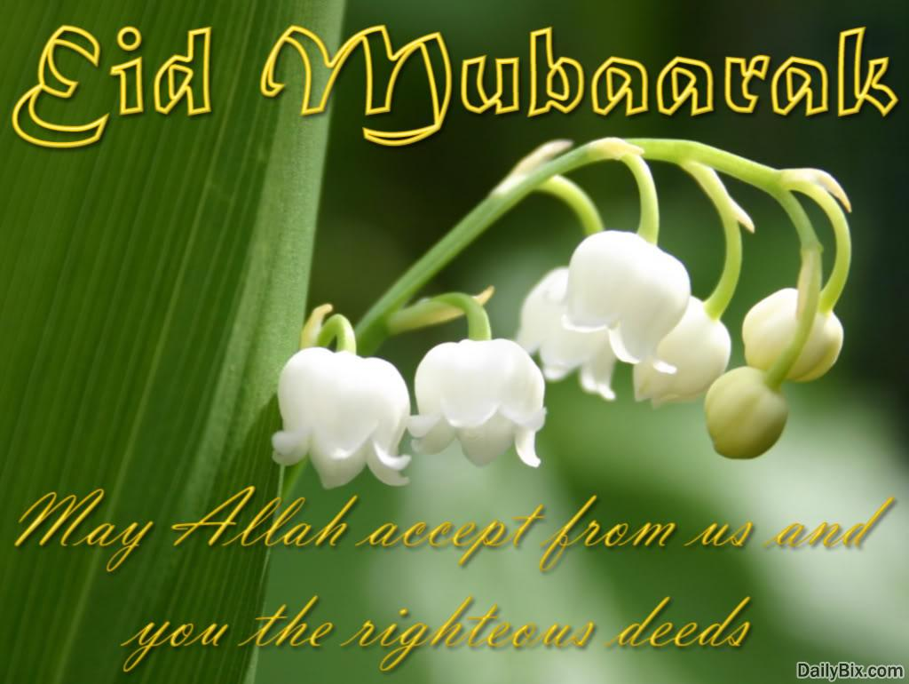Eid ul Fitr Mubarak 2015 Short Whatsapp Status, Wishes, SMS, Messages Images, Wallpapers, Photos