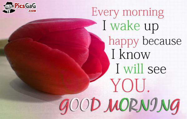 I Love You Good Morning Wishes Messages Pictures