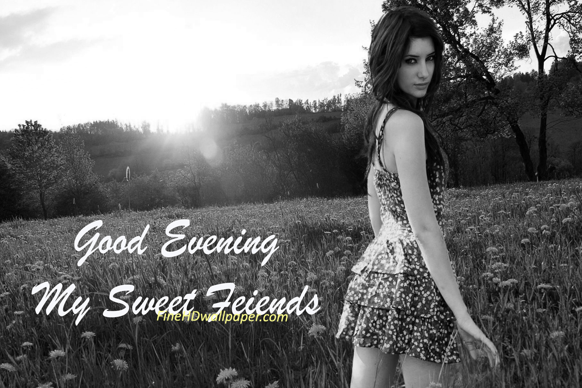 Best Good Evening Wishes Messages For Friends Good Evening Greetings