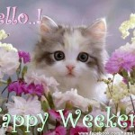 Happy Weekend Wishes and Quotes Images – Best Weekend Text Messages