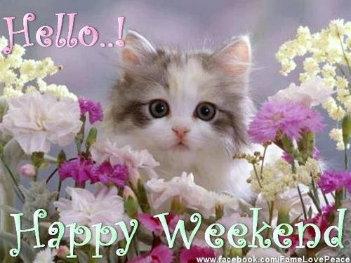 Happy Weekend Quotes Images